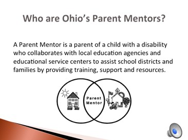 Who are Parent Mentors