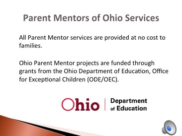 Parent Mentor Services