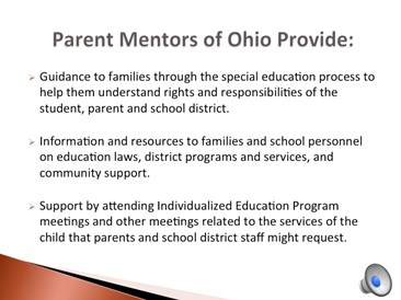 What do Parent Mentors provide?