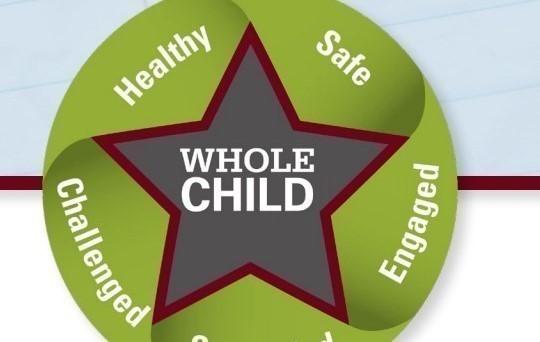 Please check out the ODE's newly released Whole Child Framework!